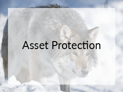 webinar-asset-protection